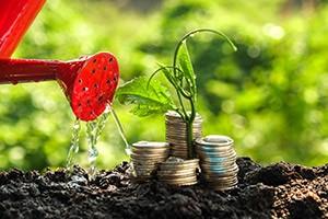 Investing – Active v Passive